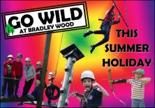 Bradley Wood Go Wild Poster